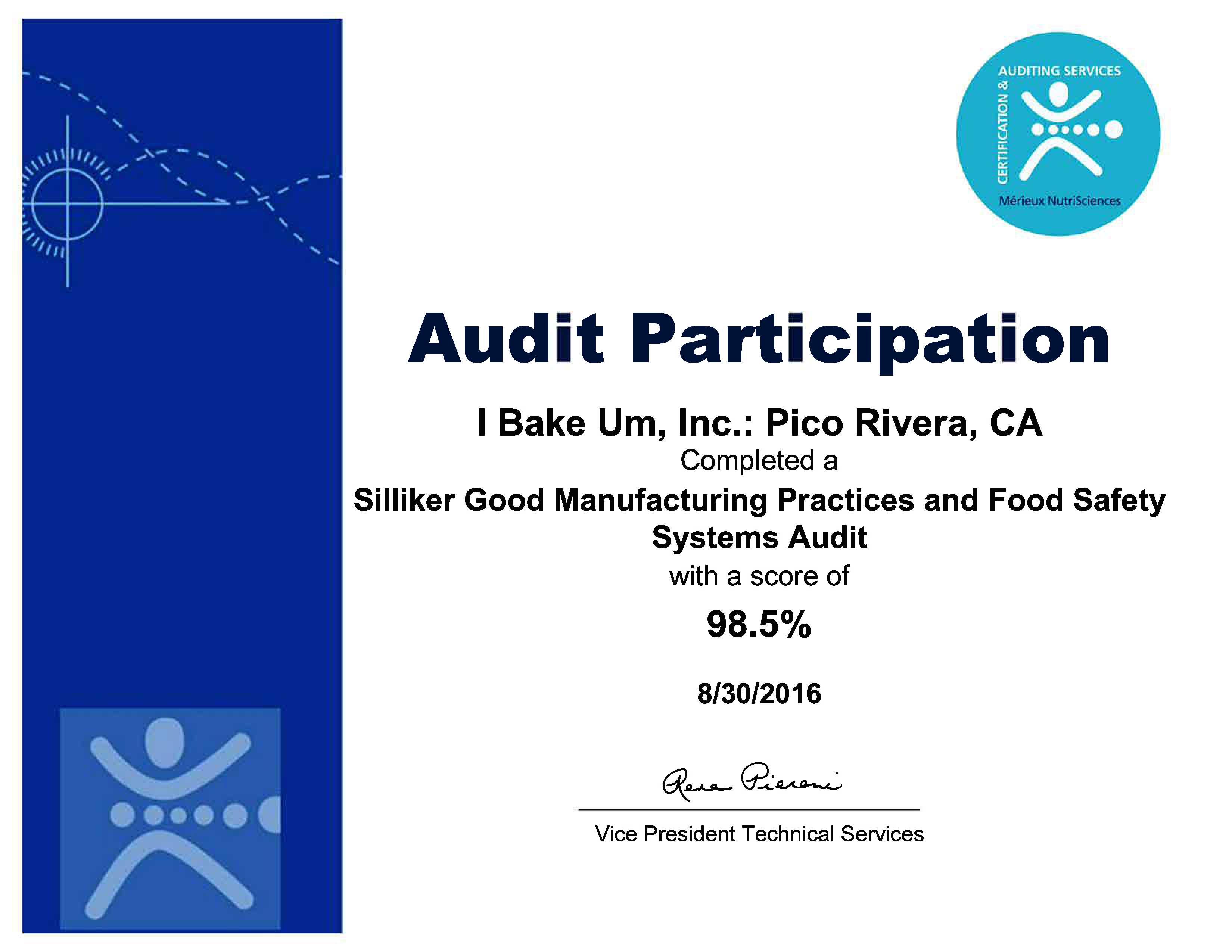 2016-audit-certificate